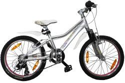Велосипед Giant AREVA 20 silver