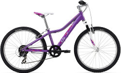 Велосипед Giant AREVA 2 24 purple