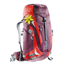 Рюкзак Deuter ACT Trail Pro 38 SL aubergine-fire (5522)