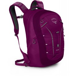 Рюкзак Osprey Axis 18 Eggplant Purple