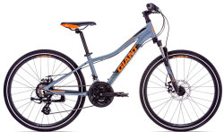 Велосипед Giant XTC JR 1 DISC 24 grey