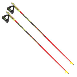 Палки Leki Walker Platinum Nordic Walking