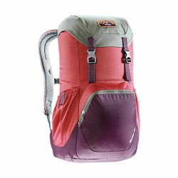 Рюкзак Deuter Walker 20 cranberry-aubergine (5005)